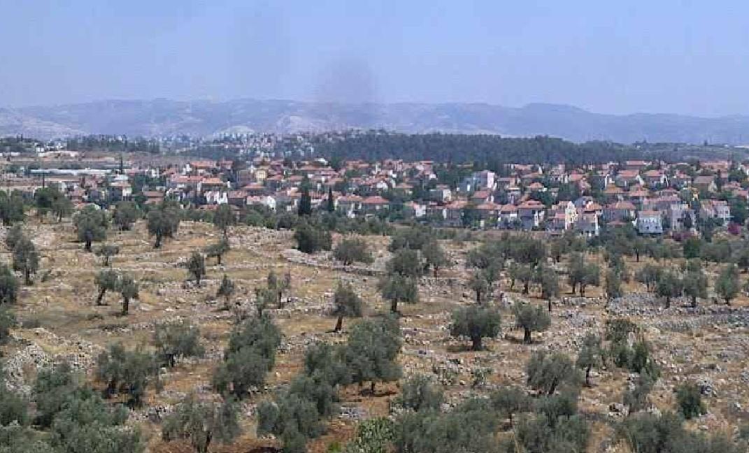 Israel 101-1